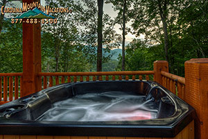Born to be Wild couples escape in Nantahala NC