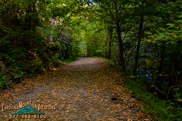Deep-Creek-NC-17.jpg