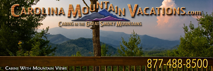 MountainView_header2.jpg