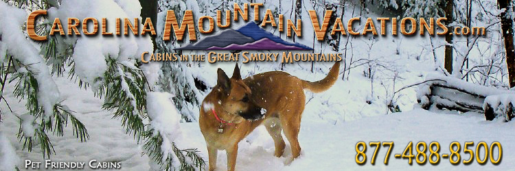 Pet Friendly NC Mountain Cabin Rentals and vacation lodging in the Bryson City, Cherokee, Nantahala and Fontana Lake areas of the North Carolina Smoky Mountains by Carolina Mountain Vacations